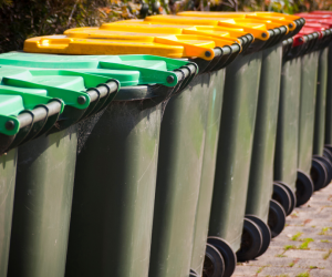 Multiple wheelie bin ready for collection
